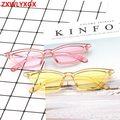 New: Color Retro Clear Frame Sunglasses