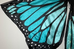 Used: Butterfly Wings